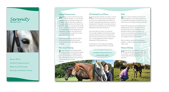Equine care brochure design
